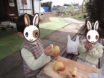 りんご狩り#4.JPG